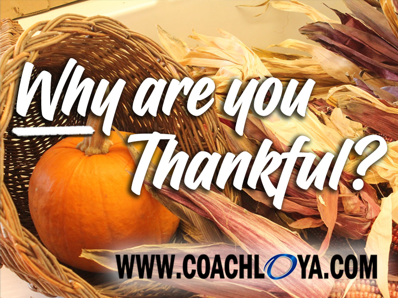 Why Are You Thankful?